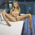 Angelica - image