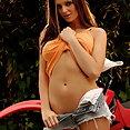 Sandra Shine - image