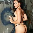 Lauren Phoenix - image